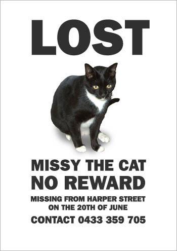 不要找設計師做尋貓海報的理由